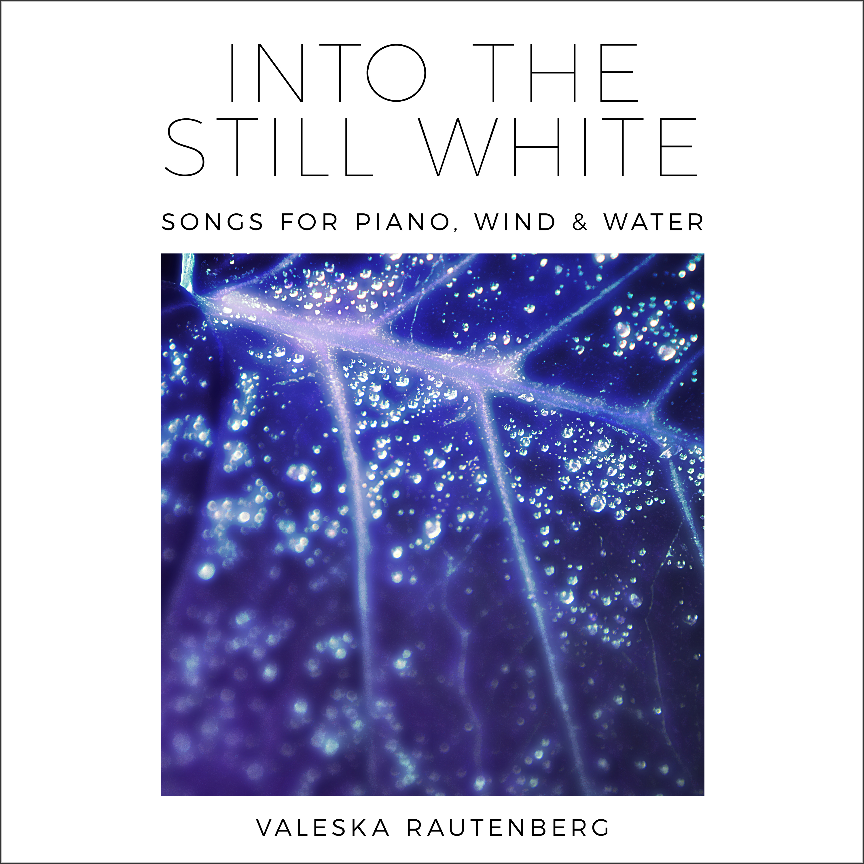 Into The Still White Valeska Rautenberg